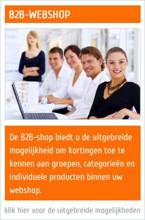 b2b webshop