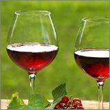 lidle-wijnshop